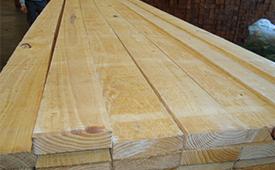 Brazil Pine ACOL(1)