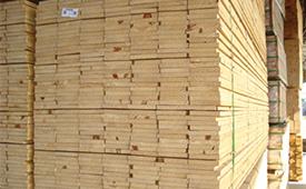 Brazil Pine ACOL(4)